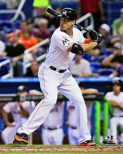 Giancarlo Stanton INTENSITY Miami Marlins Premium MLB 16x20